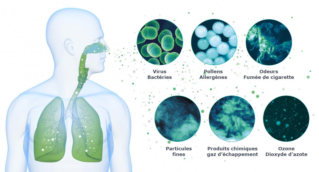 Poumons et particules